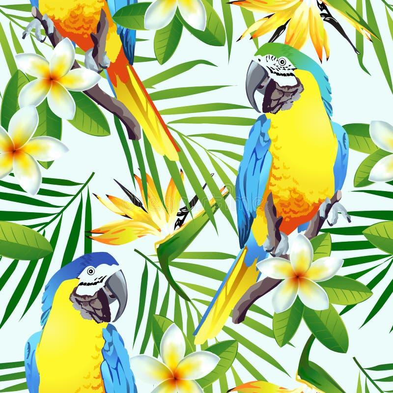 Bezszwowy tropikalny wzór z ptakami ilustracja wektor