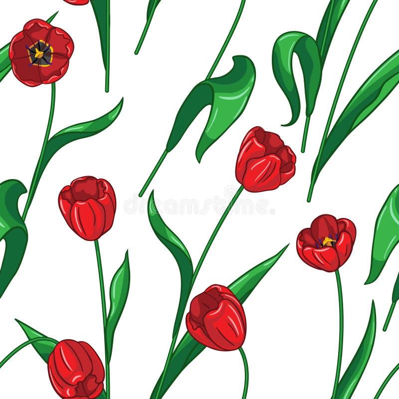 Bezszwowy tulipanu wzór na bielu royalty ilustracja