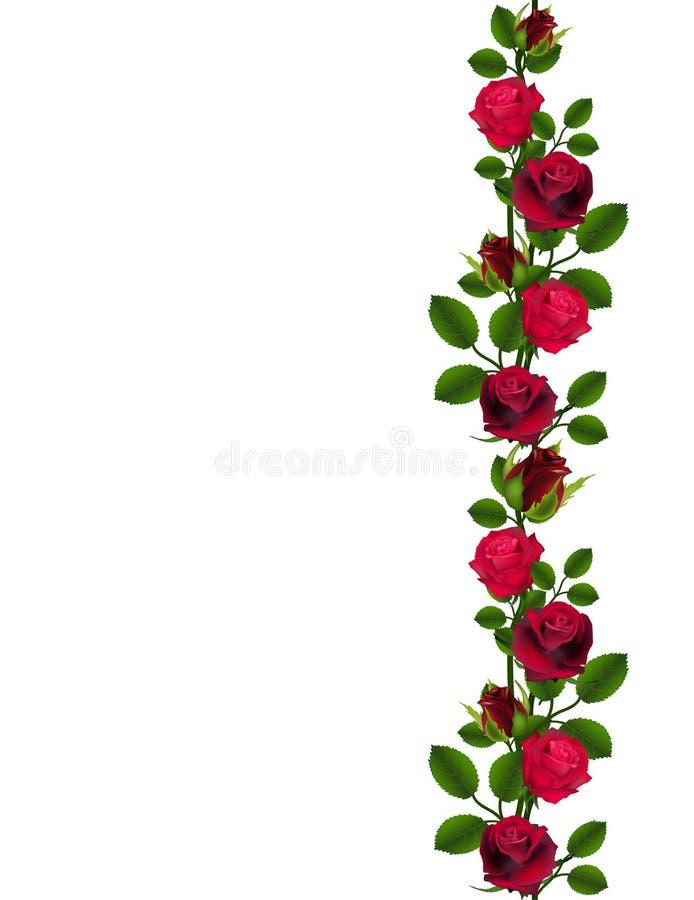Bezszwowy czerwonych róż wzór ilustracji