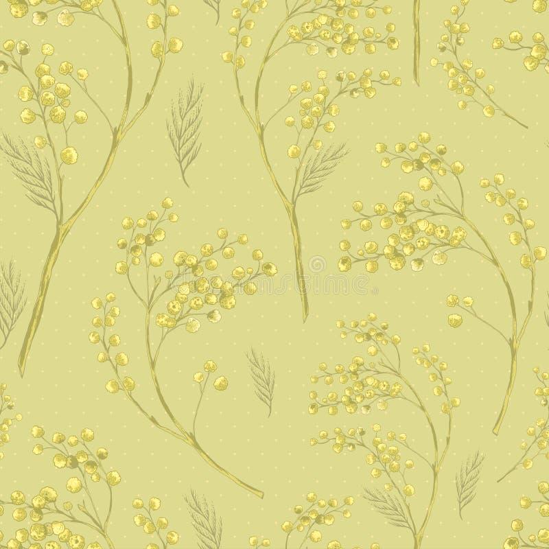 Bezszwowy wiosna wzór z Sprig mimozy ilustracja wektor
