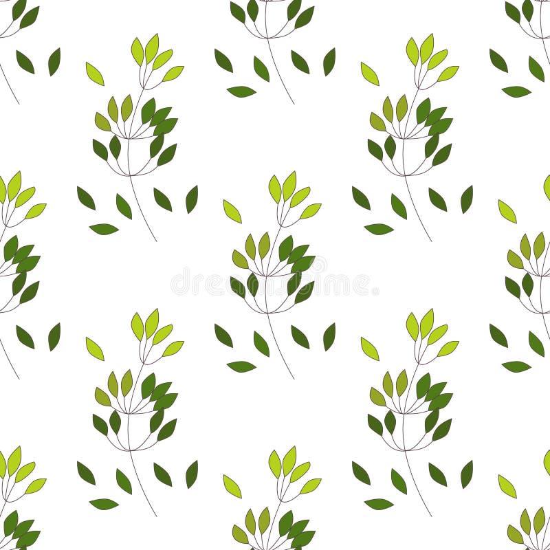 Bezszwowy wzór Eukaliptusowy palmowy paprociowy różny drzewo, ulistnienie naturalne gałąź, zieleń opuszcza, ziele, tropikalnej ro royalty ilustracja