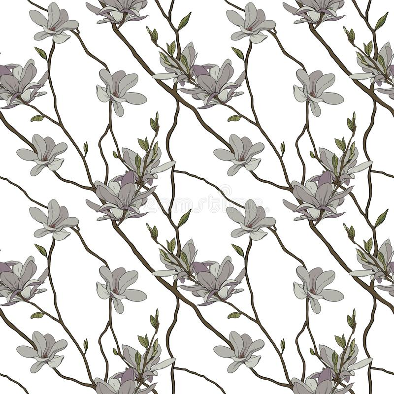Bezszwowy wzór kwiaty magnolia i gałąź ilustracji