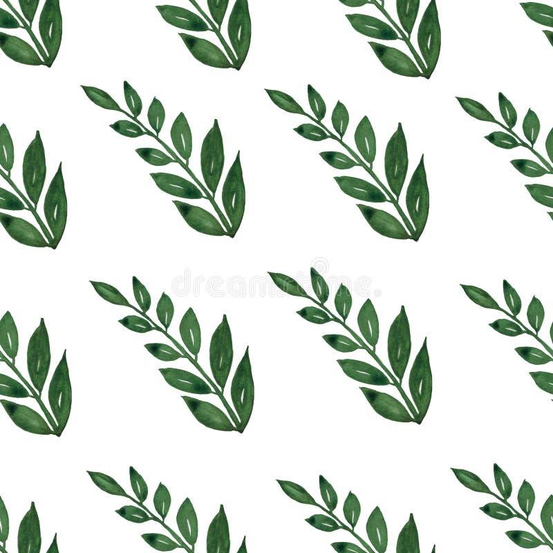 Bezszwowy wzór, tło, tekstura druk z lekka ręka rysującymi akwarela zielonego koloru zakurzonymi liśćmi, lasowi ziele, rośliny ilustracji