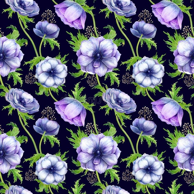 Bezszwowy wzór z akwarela białym purpurowym anemonem kwitnie Wiosna kwiecisty projekt dla ślubnego zaproszenia obraz royalty free