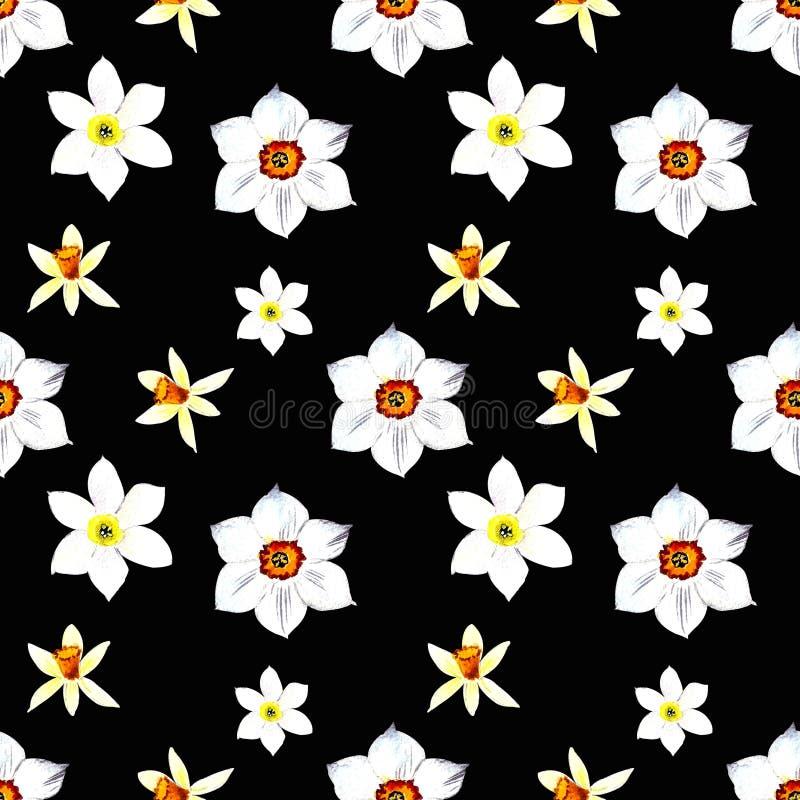 Bezszwowy wzór z narcyza i liści akwareli ilustracją na czarnym tle ilustracji