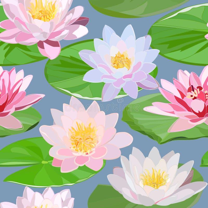 Bezszwowy wzór biel, różowe wodne leluje i zieleń liście na błękitnym tle royalty ilustracja