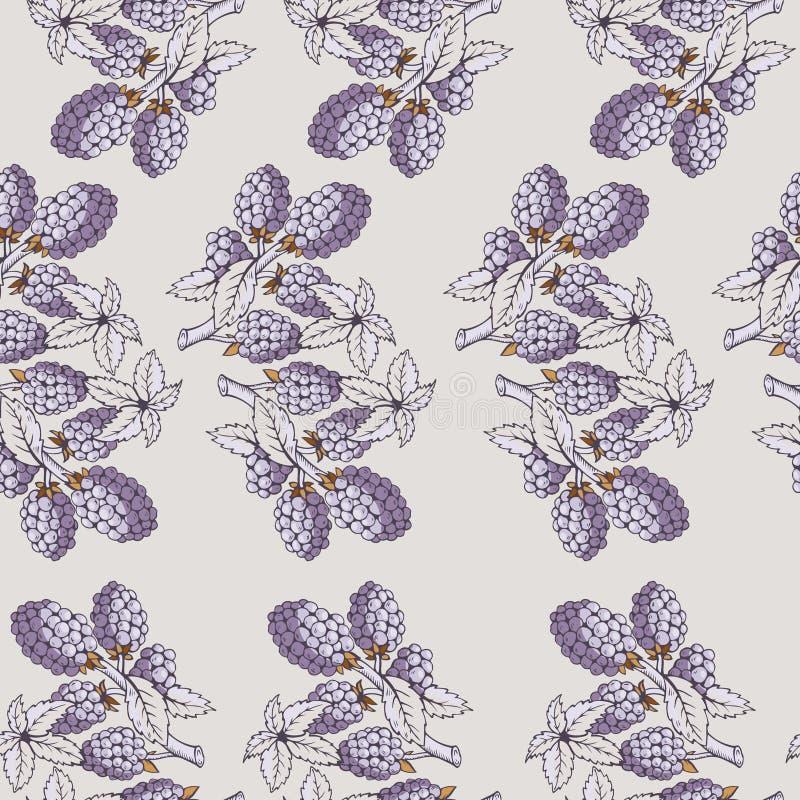 Bezszwowy wzór czernica z gałąź i liśćmi royalty ilustracja