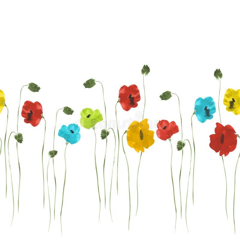 Bezszwowy wzór czerwień, błękit, żółci kwiaty maczki z zielonymi trzonami na białym tle Akwarela 2 ilustracji
