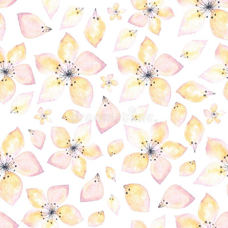 Bezszwowy wzór delikatny kwiat i płatki na białym tle akwarela royalty ilustracja
