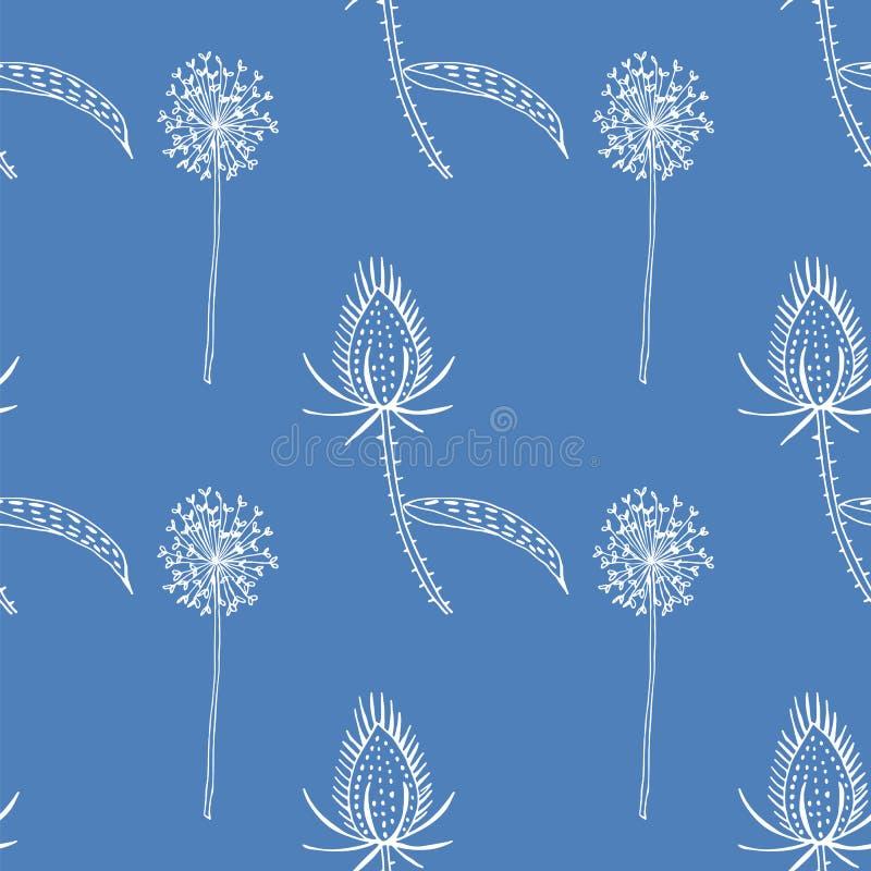 Bezszwowy wzór dziki teasel i dandelions royalty ilustracja