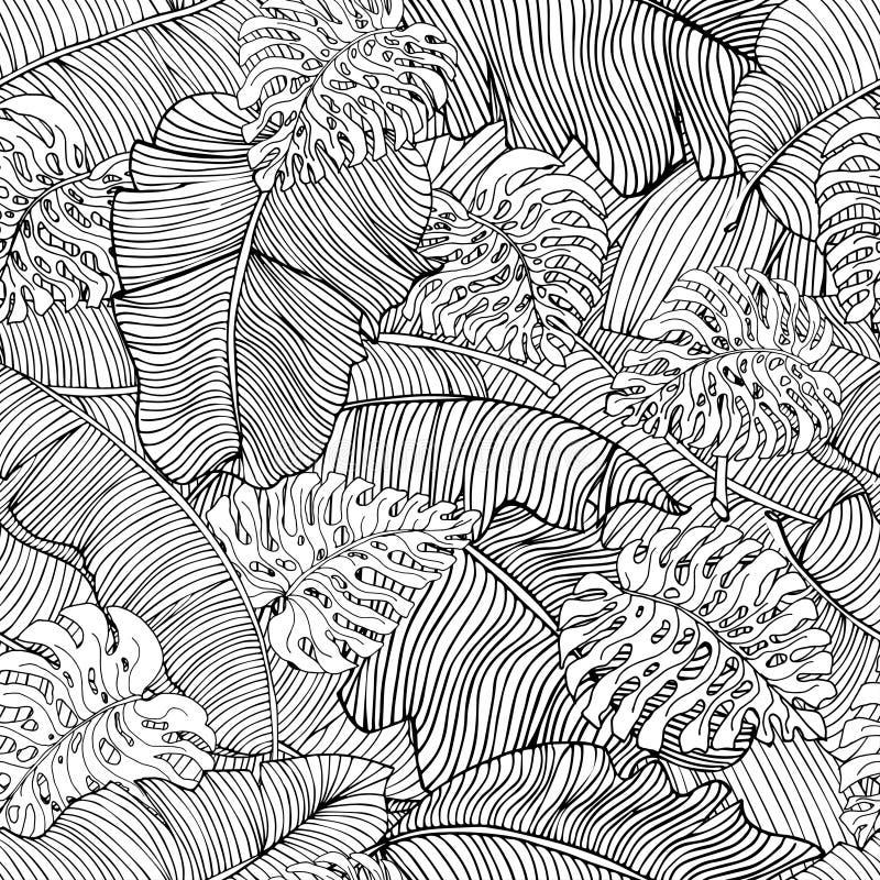 Bezszwowy wzór egzotyczni biali bananów liście, monstera i opuszcza z czarnym konturem Dekoracyjny wizerunek z tropikalnym ulistn royalty ilustracja