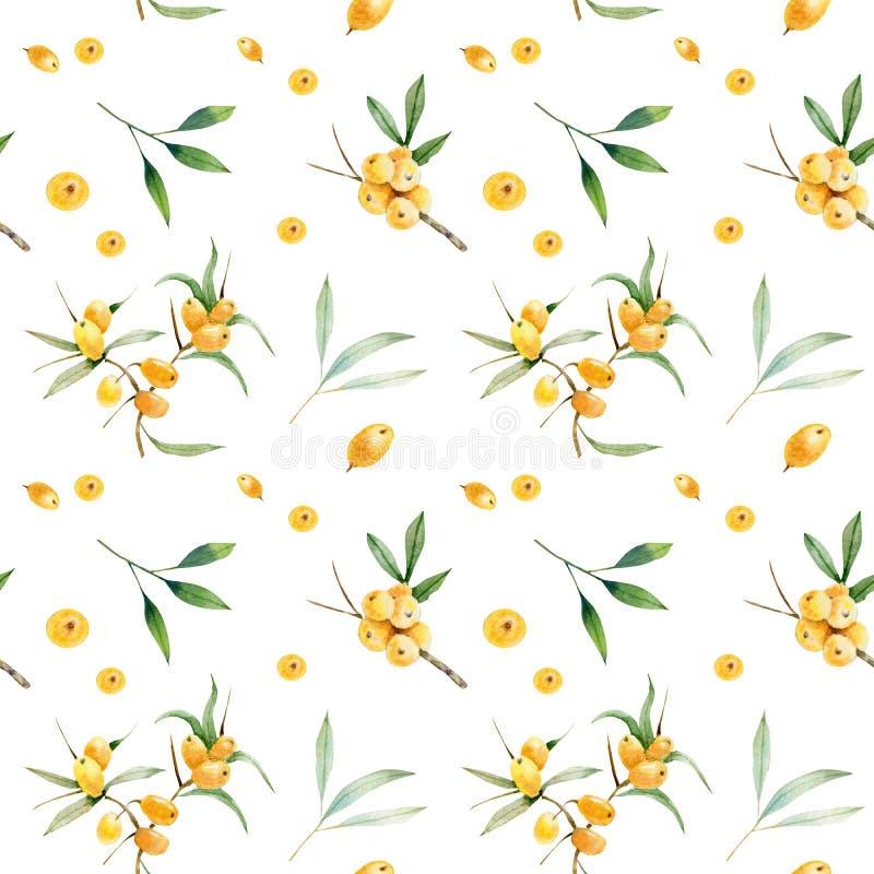 Bezszwowy wzór gałęziaste e jagody viburnum, buckthorn i sloe, ilustracji
