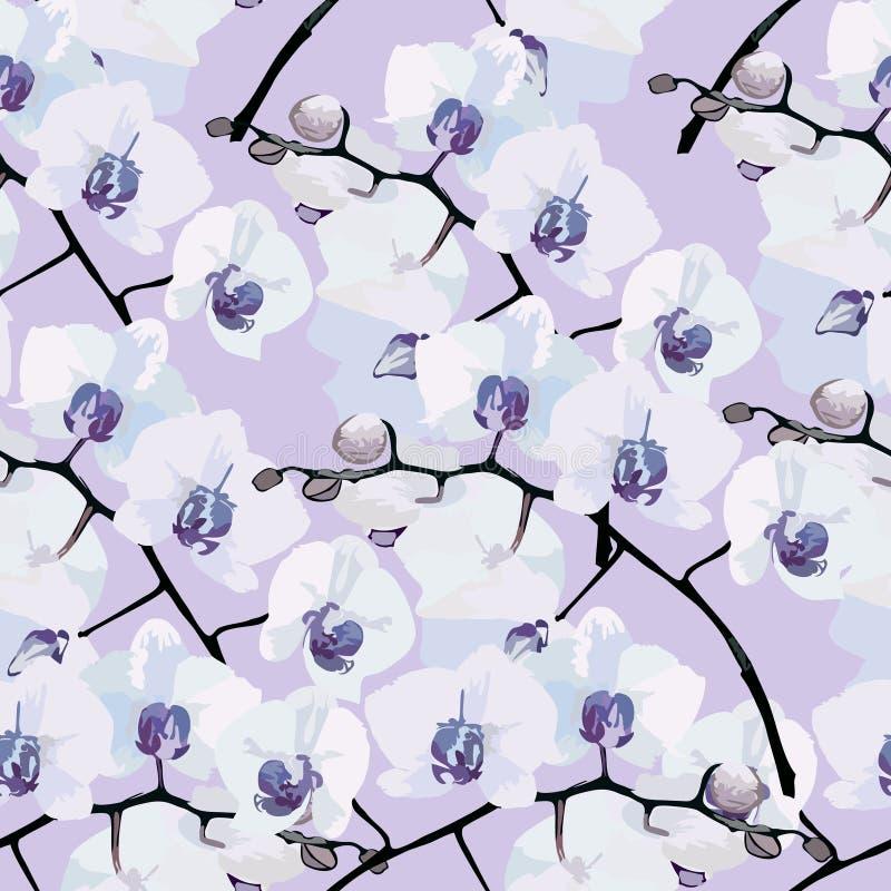 Bezszwowy wzór kwiat orchidee ilustracja wektor