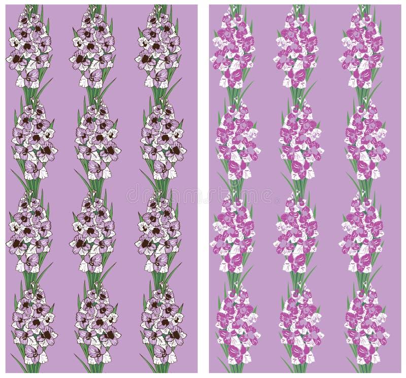 Bezszwowy wzór kwitnie gladiolus purpury ilustracja wektor