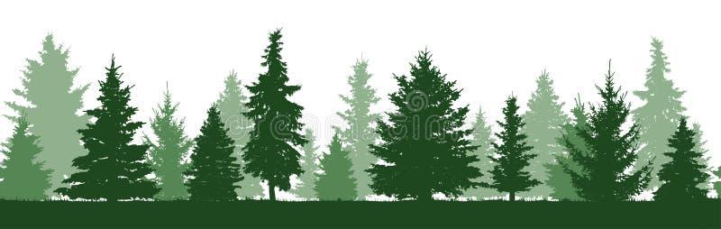 Bezszwowy wzór lasowa jedlinowych drzew sylwetka royalty ilustracja