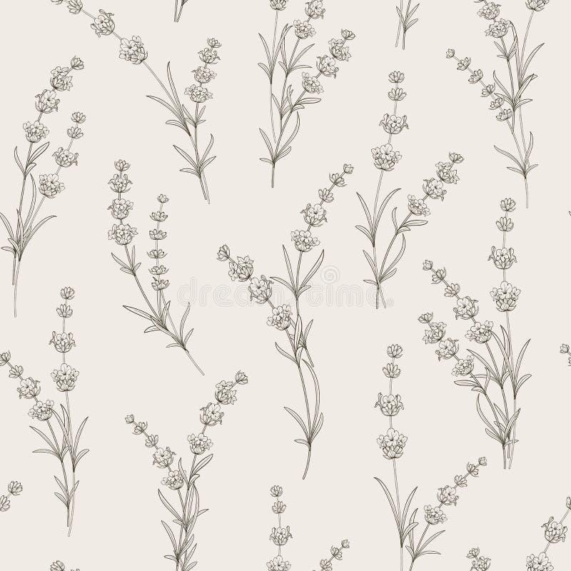 Bezszwowy wzór lawendowi kwiaty ilustracji