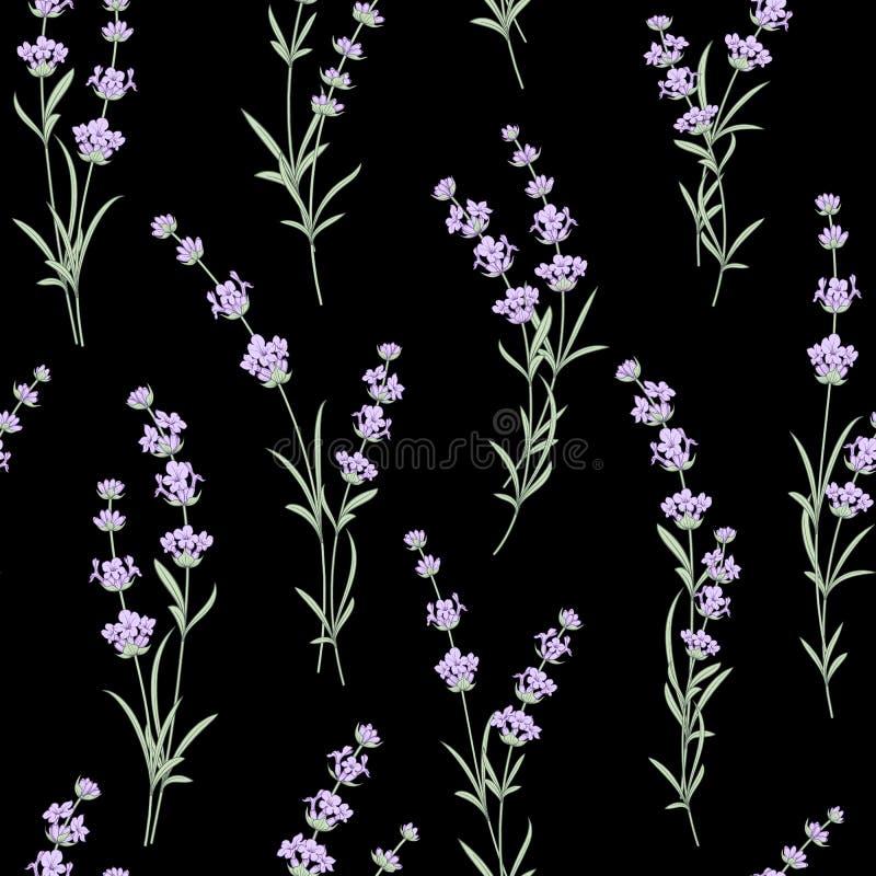 Bezszwowy wzór Lawendowy kwiat ilustracja wektor