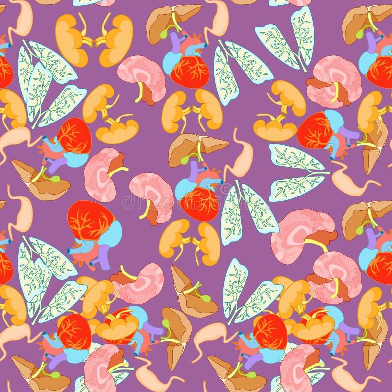 Bezszwowy wzór ludzcy organy wśrodku ciała na purpury bac ilustracja wektor