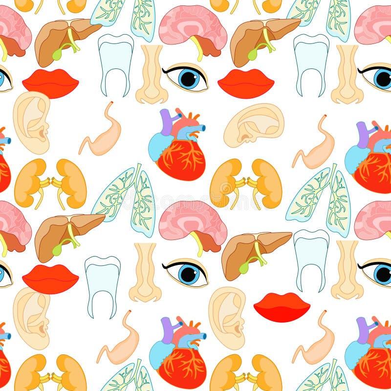 Bezszwowy wzór ludzcy organy w twarzy i ciele Wektor il ilustracji