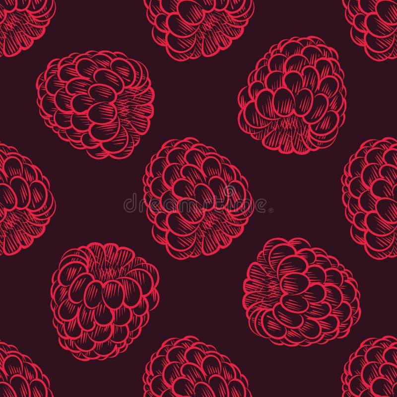 Bezszwowy wzór malinki, owoc wzór royalty ilustracja