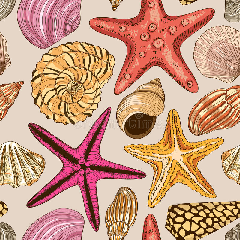 Bezszwowy wzór seashells i rozgwiazda ilustracji