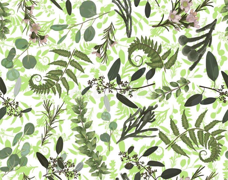 Bezszwowy wzór, tło, tekstura druk z lekka ręka rysującym akwarela zielonym eukaliptusem, lasowa paproć, rozgałęzia się boxwood, royalty ilustracja