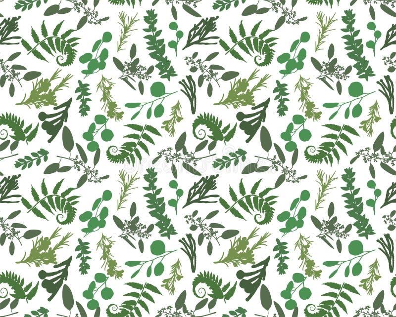 Bezszwowy wzór, tekstura druk z lekka ręka rysującym akwarela zielonym eukaliptusem, lasowa paproć, rozgałęzia się boxwood, bruni ilustracji