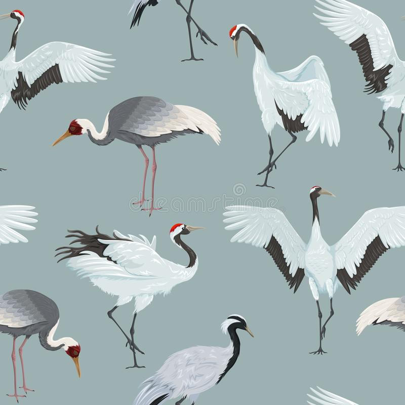 Bezszwowy wzór z żurawiami royalty ilustracja