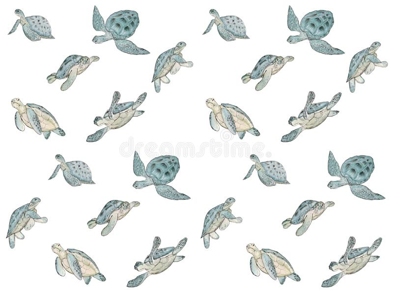Bezszwowy wzór z akwarela dennym żółwiem na białym tle Lato egzotyczny druk royalty ilustracja
