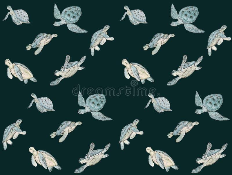 Bezszwowy wzór z akwarela dennym żółwiem na białym tle Lato egzotyczny druk ilustracja wektor