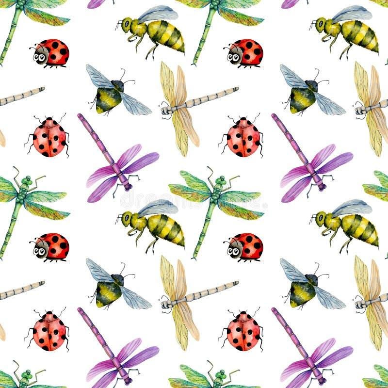 Bezszwowy wzór z akwareli kolorowymi dragonflies, pszczołami i biedronkami, ilustracji