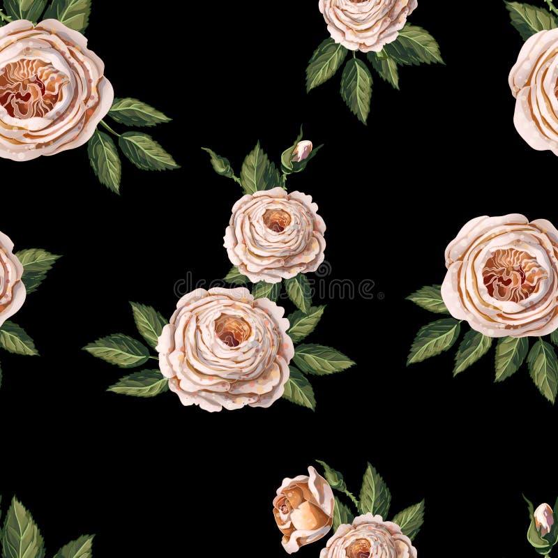 Bezszwowy wzór z Angielskimi różami na czarnym tle wektor ilustracja wektor