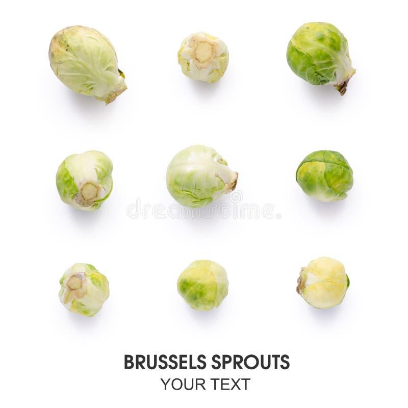 Bezszwowy wzór z Brussels flancami obraz royalty free