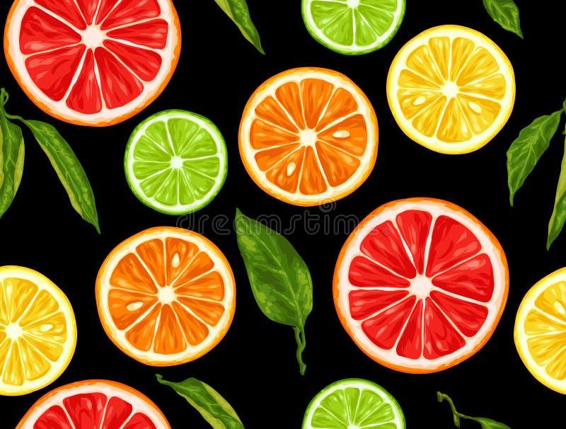 Bezszwowy wzór z cytrus owoc plasterkami Mieszanka grapefruitowa i pomarańczowa cytryny wapno ilustracji