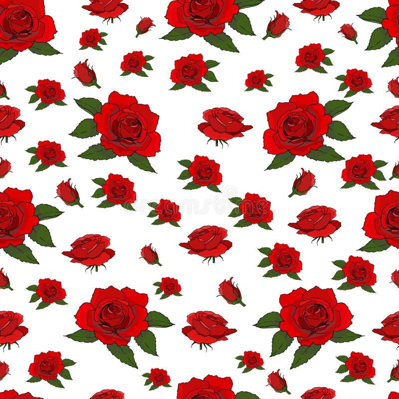 Bezszwowy wzór z czerwonymi różami odizolowywać na białym tle ilustracji