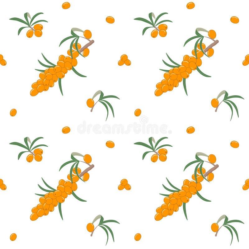Bezszwowy wzór z dennego buckthorn jagodami na gałąź z liśćmi również zwrócić corel ilustracji wektora royalty ilustracja