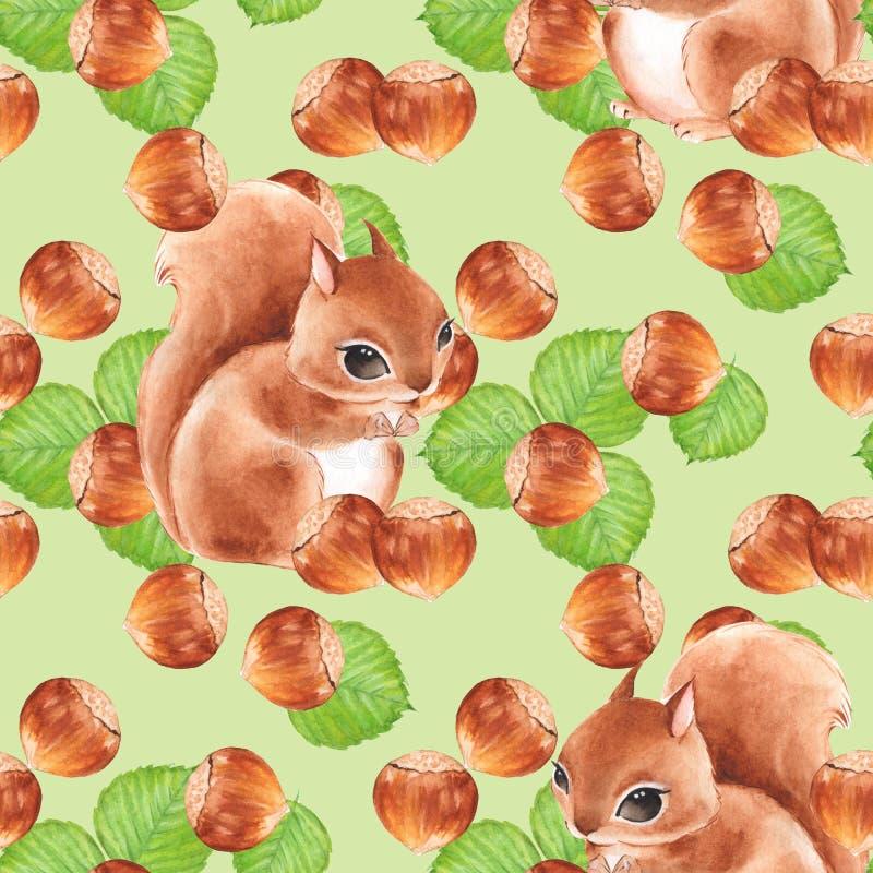 Bezszwowy wzór z dokrętkami i wiewiórką ilustracja wektor