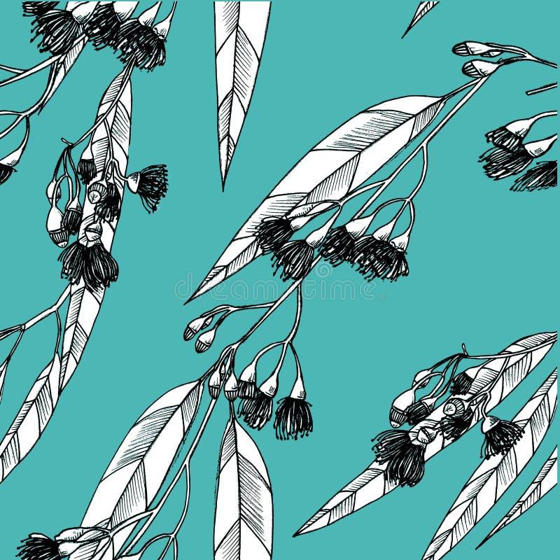 Bezszwowy wzór z eucalipts na tle grafit ilustracji