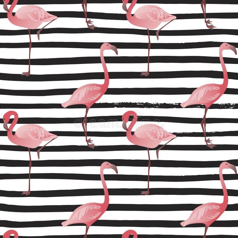 Bezszwowy wzór z flamingiem Wektorowy lata tło obrazy royalty free