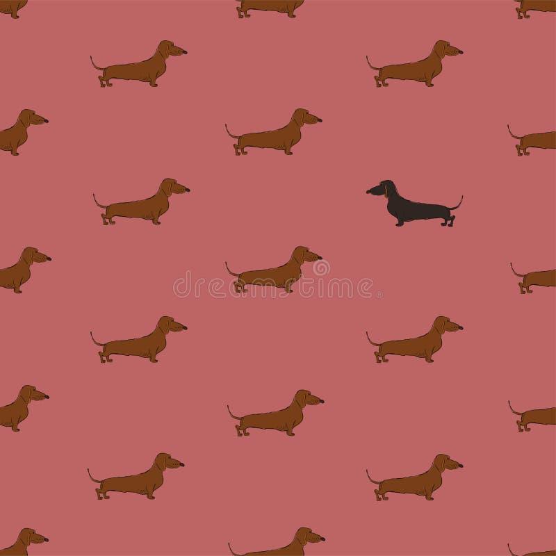 Bezszwowy wzór Z jamnika psem ilustracja wektor