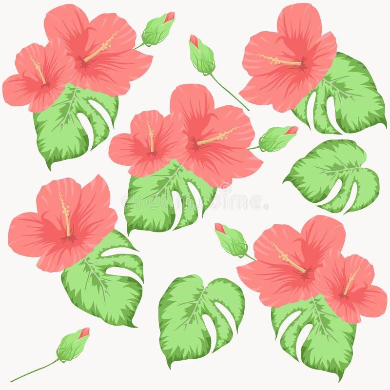 Bezszwowy wzór z kwiatami poślubnik zieleni i menchii liście ilustracji