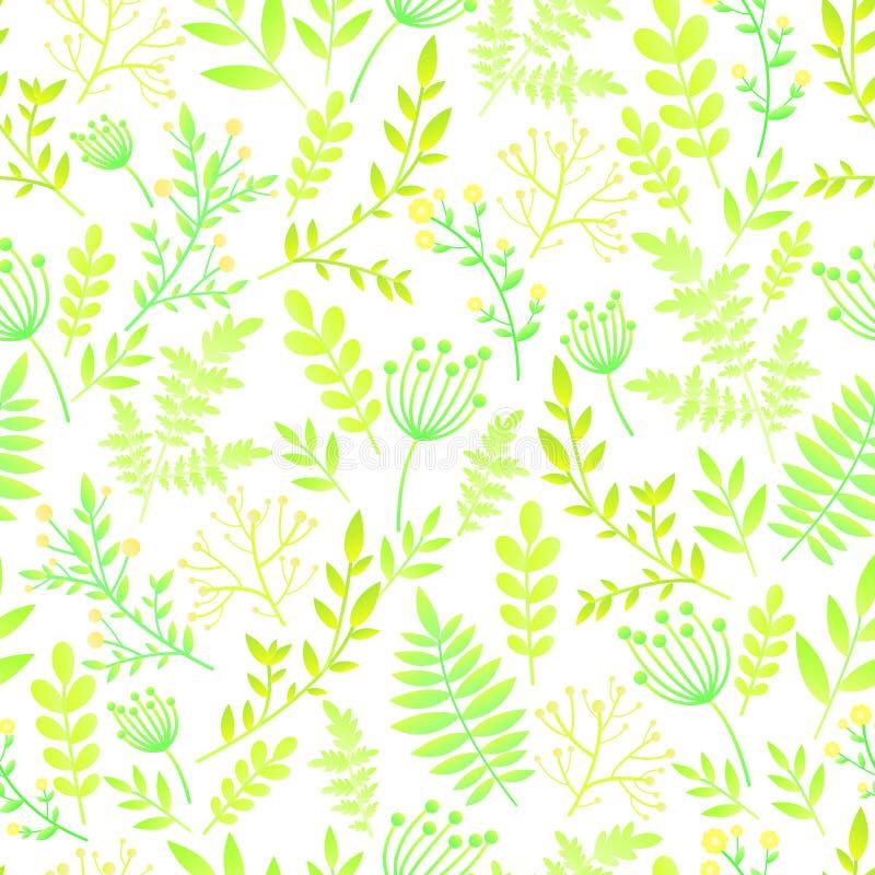 Bezszwowy wzór z liśćmi i kwiatami Botaniczny kwiecisty tło, delikatni romantyczni, naiwni dzicy kwiaty, wiosna, lato czas, ilustracja wektor