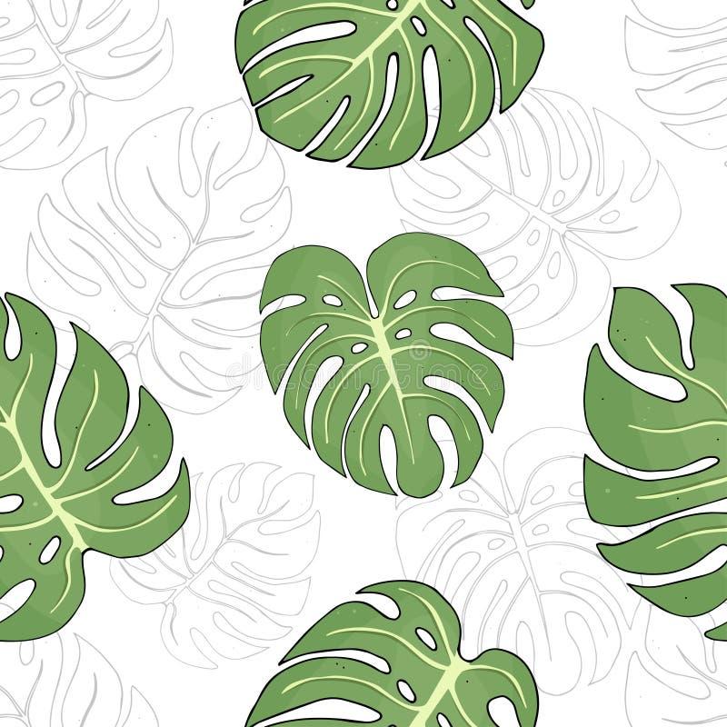 Bezszwowy wzór z liśćmi tropikalne Monstera rośliny ilustracja wektor