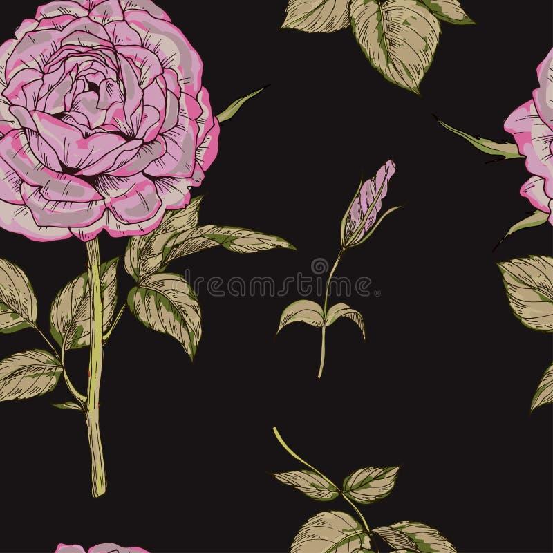 Bezszwowy wzór z menchii róży kwiatem odizolowywającym na czarnym tle delikatnie również zwrócić corel ilustracji wektora royalty ilustracja