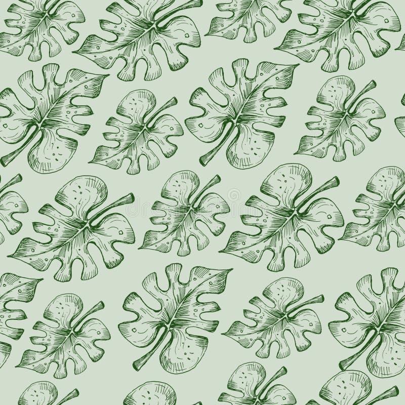 Bezszwowy wzór z monstera opuszcza na zielonym tle ilustracji