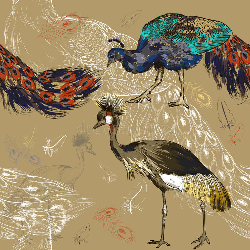 Bezszwowy wzór z pawiem i Koronowanym żurawiem royalty ilustracja