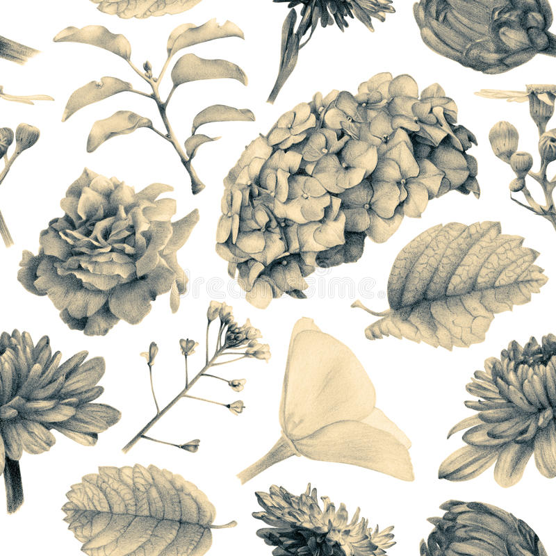 Bezszwowy wzór z piękną wiosną kwitnie i rośliny ilustracji