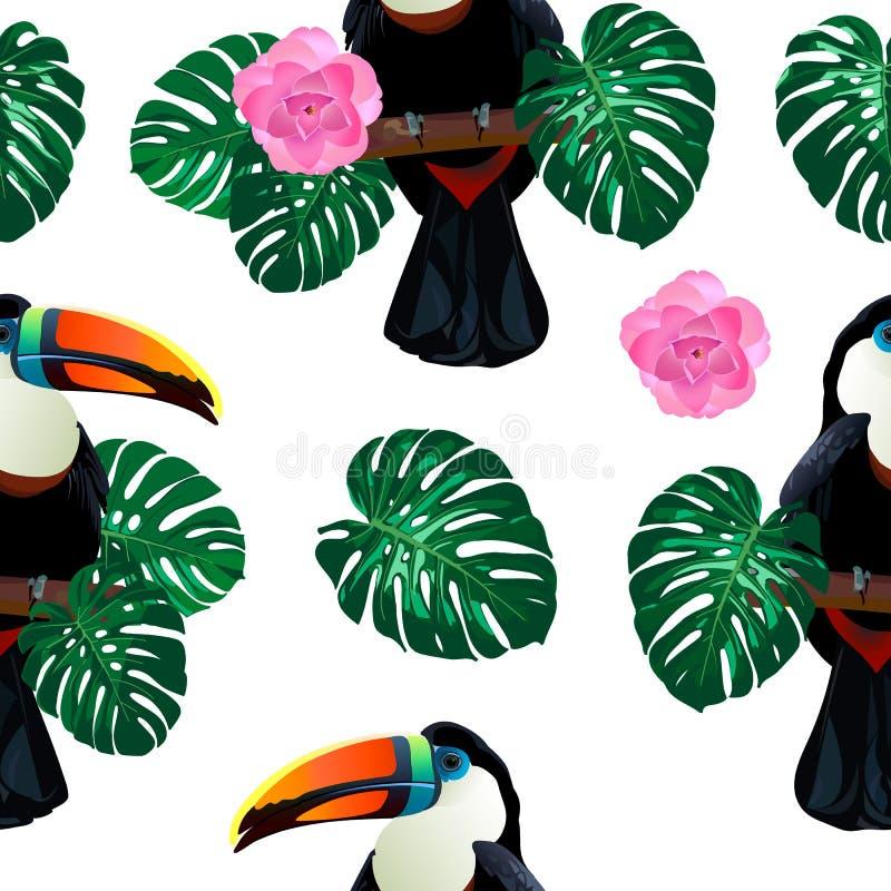 Bezszwowy wzór z pieprzojada ptasim obsiadaniem na gałąź wokoło palmowego monstera opuszcza i kwitnie na bielu ilustracja wektor