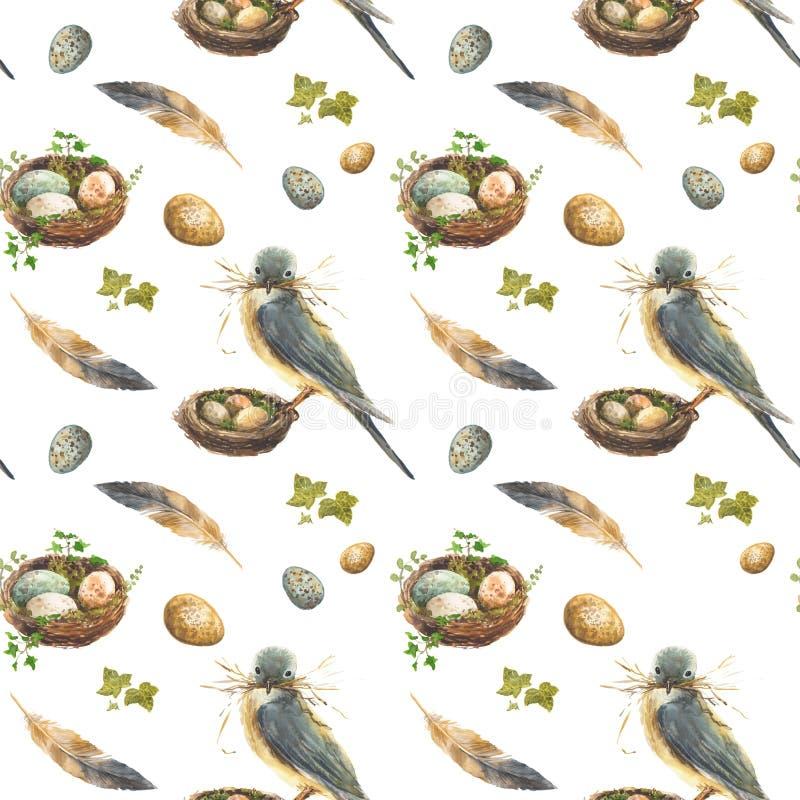 Bezszwowy wzór z ptakiem na gniazdeczku, jajkach i piórkach, royalty ilustracja