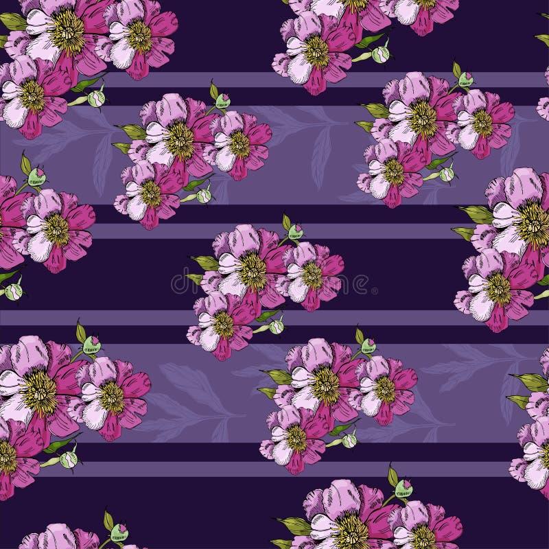Bezszwowy wzór z różowymi bukietami kwiaty peoni i przezroczystości paski liście peonia R?ka rysuj?cy atramentu nakre?lenie royalty ilustracja